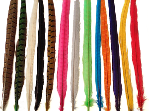 Fly Fishing Pheasant Feathers